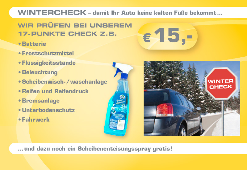 Winter-/Urlaubs-Check - Auto Hirsch